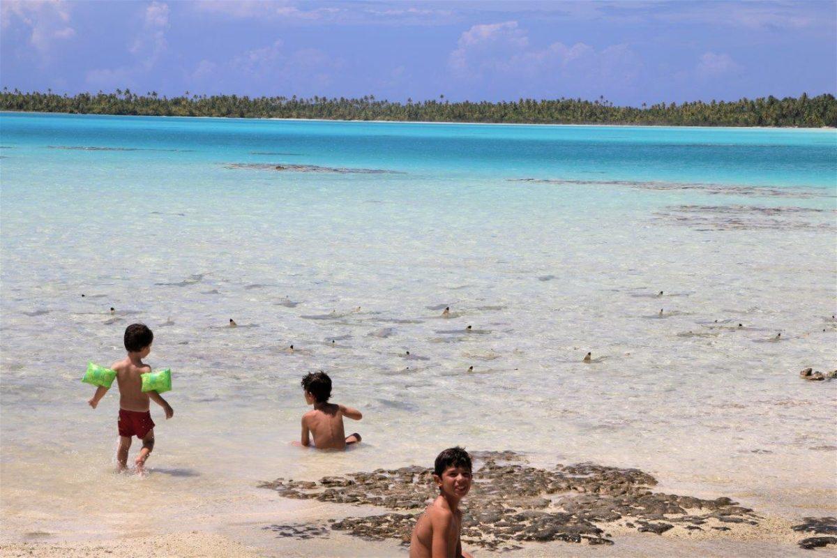 Rangiroa : le lagon bleu et ses requins