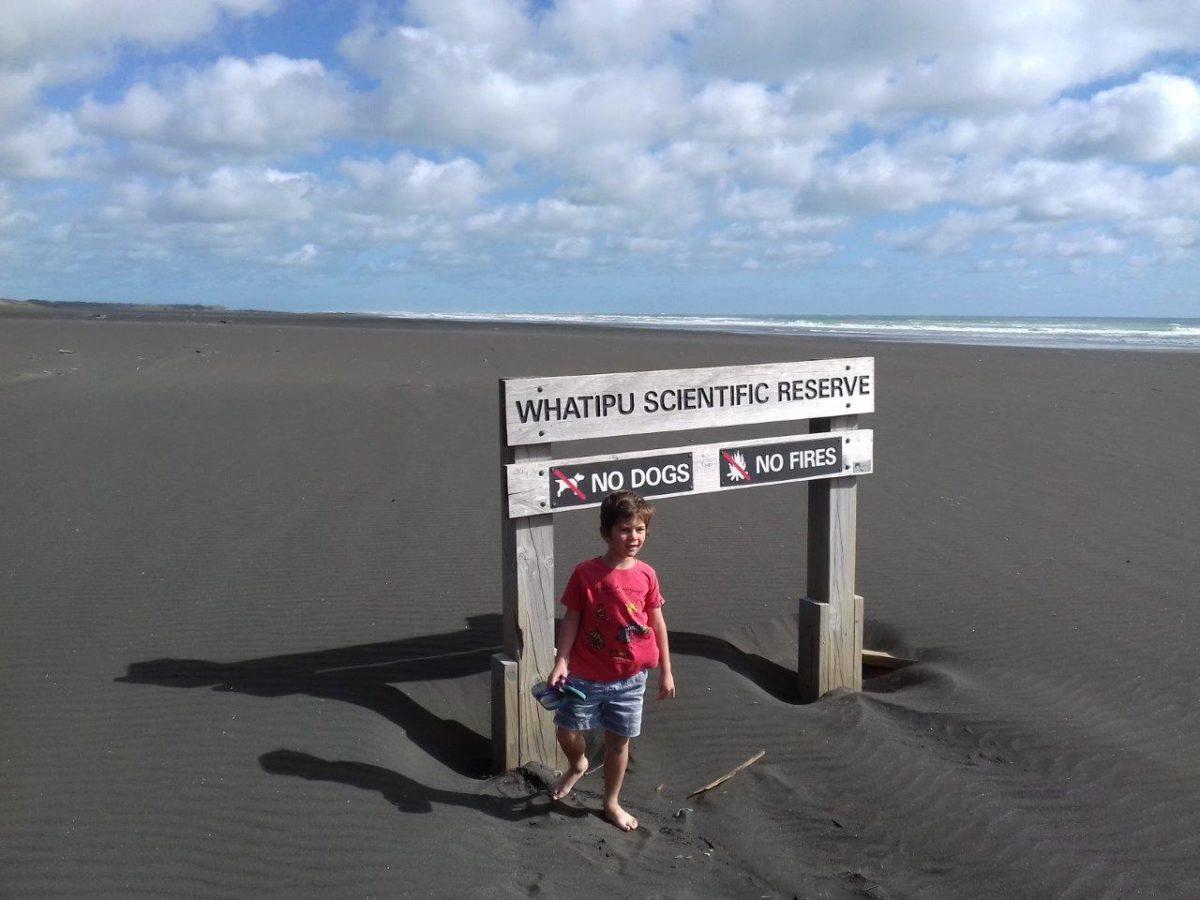 Auckland : Plages de Piha et de Karekare