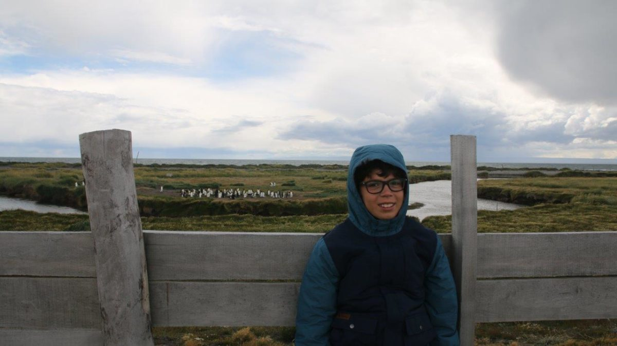 Terre de Feu : Porvenir et les Manchots Royaux (Parque Pingüino Rey)